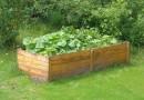 Hochbeet: Vorteile eines erhöhten Gartenbeets