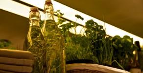 Kräuteröl und Würzöle selber machen