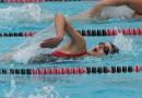 4 Schwimmstile schwimmen lernen: Brustschwimmen, Kraulen, Rückenschwimmen, Delfin