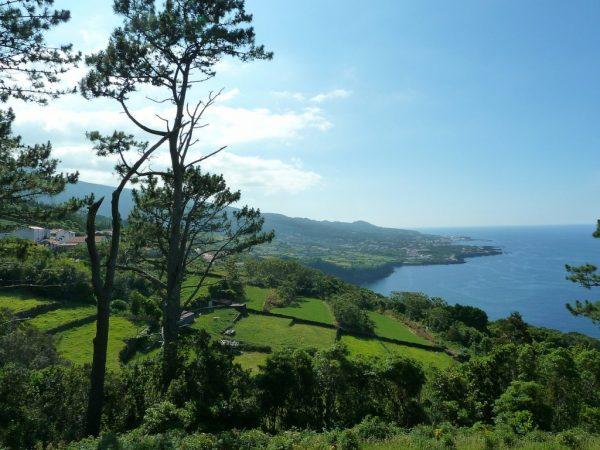 Ferien auf den Azoren - Grün und warm auch im Winter