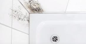 Schimmel im Bad richtig entfernen: Die besten Hausmittel & Tipps um Schimmelbildung zu vermeiden