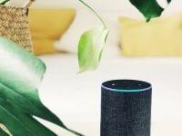 Die besten Alexa Tipps & Skills: Diese Tricks sollte jeder Amazon Echo Besitzer kennen