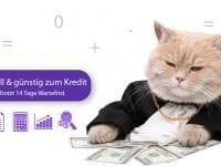 Sofortkredit Schweiz – Trotz 14 Tage gesetzlicher Wartefrist schnell Kredit bekommen