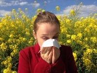 16 Tipps gegen Heuschnupfen: So kommen Allergiker beschwerdefrei durch den Sommer