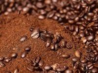 Kaffeesatz im Garten: Was der natürliche Dünger alles kann