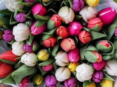 Blumenstrauss Bestellen Blumengeschaeft