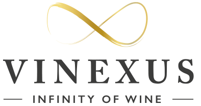 Vinexus Logo