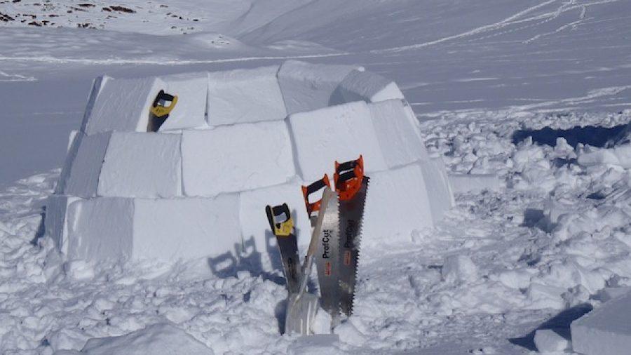 Iglu bauen Alpinschule Adelboden