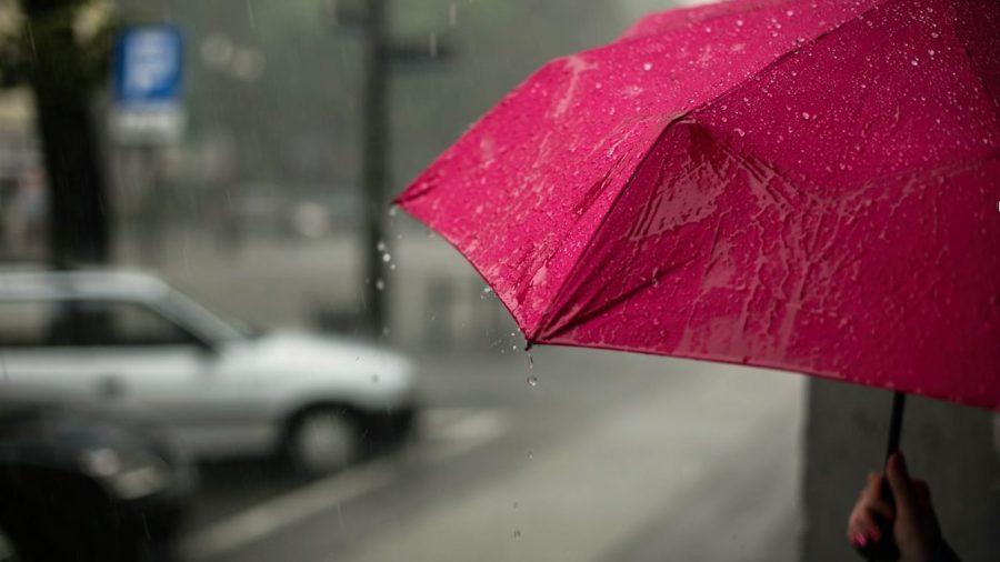 pink-umbrella-rain